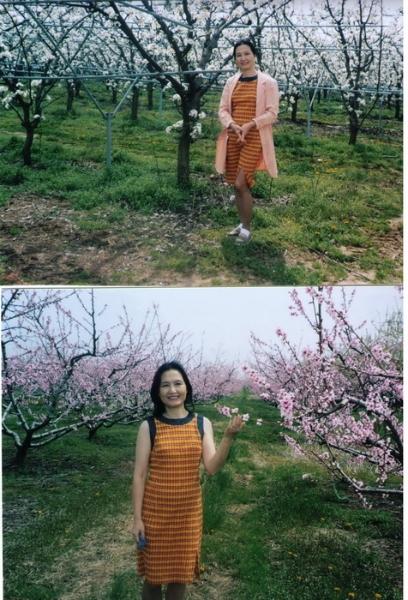 pic3_crop